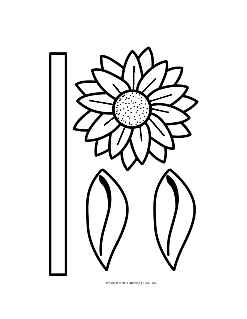 sunflower template preschool sunflower activity hatchling